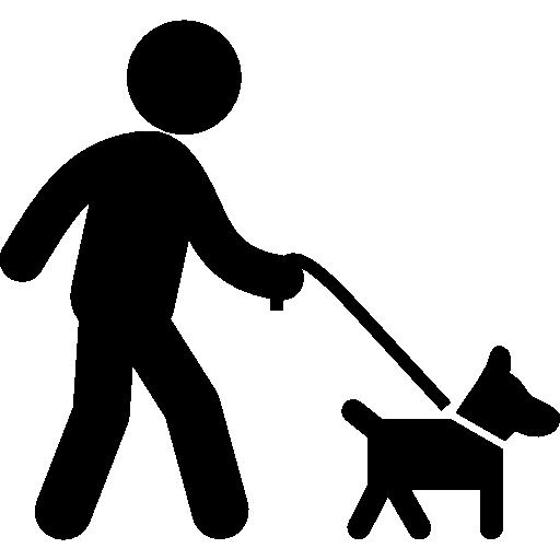chien laisse