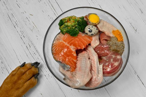 menu_barf_pour_chien_ingredients_quantites_recettes_520_600